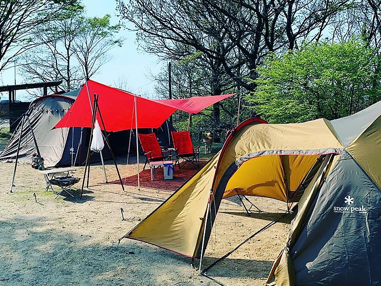 グループキャンプは楽しすぎる体験だった!