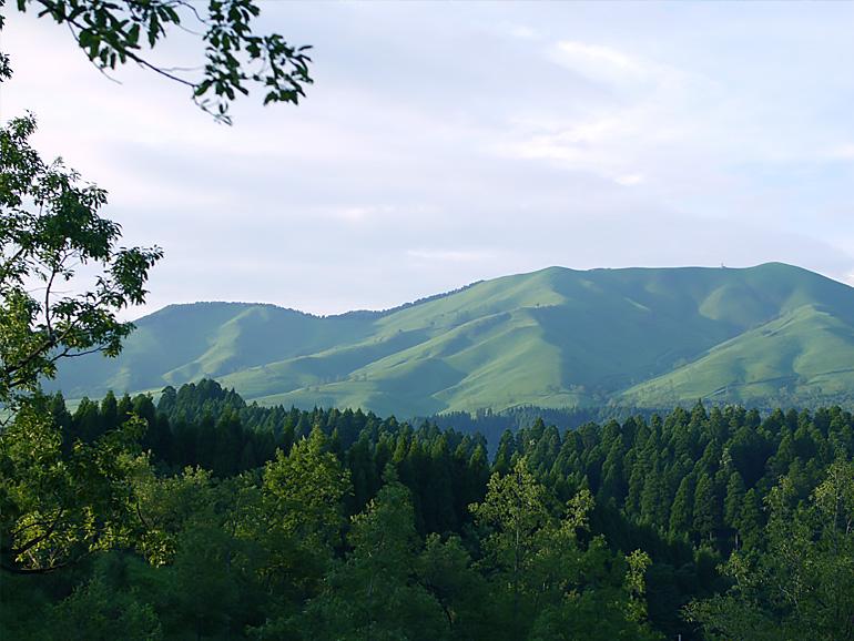 梅雨前のキャンプを蔵迫温泉さくら(熊本県)で楽しんできた